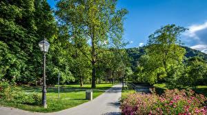 壁纸、、ザグレブ、公園、クロアチア、木、街灯、歩道、Samobor、自然