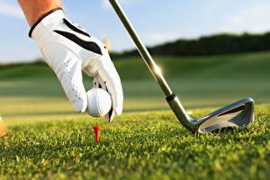 Bilder Großansicht Golf Acker Gras Rasen Handschuh Ball Kugeln sportliches