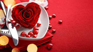 Wallpaper Valentine's Day Roses Closeup Red Heart Plate Flowers