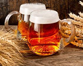 Fotos Bier Becher Zwei Schaum Ähre Lebensmittel