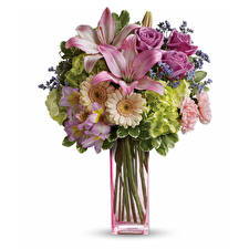 Fotos Sträuße Rosen Gerbera Lilien Hortensien Weißer hintergrund Vase Blüte