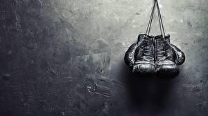 Wallpaper Boxing Glove Sport