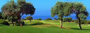 Bilder Felder Golf Bäume Natur