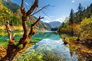 Photo Jiuzhaigou park China Parks Autumn River Mountains Landscape photography Trunk tree Trees Nature