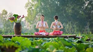 Bilder Lotussitz Asiatische Yoga 2 Mädchens Sport