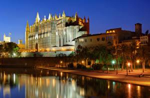 Bilder Mallorca Spanien Haus Palast Nacht Palmengewächse Straßenlaterne Kanal Palma de Mallorca