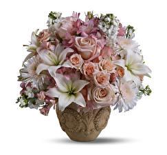 Hintergrundbilder Blumensträuße Inkalilien Rosen Lilien Weißer hintergrund Vase Blumen