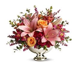 Fotos Blumensträuße Lilien Rosen Weißer hintergrund Vase Blüte