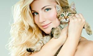 Fonds d'écran Chat domestique Blondeur Fille Visage Chatons Main Belles Filles Animaux