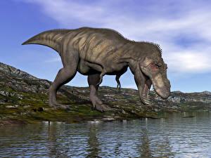 Fonds d'écran Dinosaures Eau En gros plan 3D_Graphiques