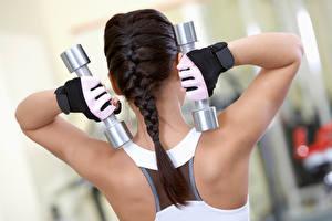 Bilder Fitness Rücken Hantel Zopf Handschuh Körperliche Aktivität sportliches Mädchens