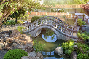 Sfondi desktop Hong Kong Cina Parco Ponte Stagno Pietre Chi Lin Nunnery Natura