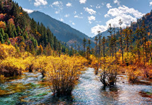 Sfondi desktop Valle del Jiuzhaigou Cina Parco Autunno Montagne Foreste Paesaggio Arbusti Natura