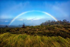 Bureaubladachtergronden Park Hawaï Regenboog Gras Haleakala National Park Rainbow Maui Natuur