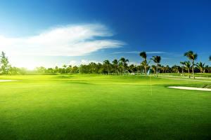 Bilder Landschaftsfotografie Felder Himmel Golf Rasen Palmen Natur