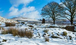 Hintergrundbilder Winter Himmel Schnee Bäume Natur