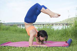 Hintergrundbilder Yoga Bein Sport Mädchens