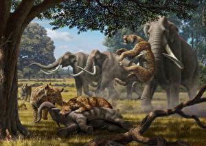 Hintergrundbilder Alte Tiere Mammute Schlägerei Jagd Tiere