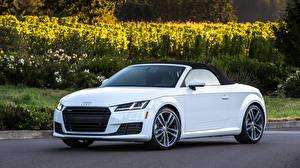Hintergrundbilder Audi Weiß Roadster 2015 quattro, US-spec, TFSI