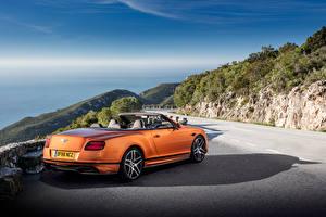 Hintergrundbilder Bentley Orange Hinten Cabriolet 2017 Continental Supersports Worldwide automobil