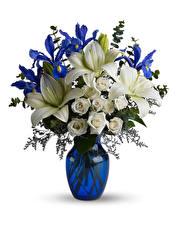 Fotos Sträuße Rosen Lilien Schwertlilien Weißer hintergrund Vase Blüte