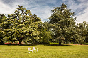 Desktop wallpapers Germany Parks Lawn Chair Trees Nordpark Dusseldorf Nature