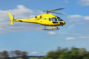 Bilder Hubschrauber Gelb Flug Luftfahrt
