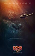 Bilder Kong: Skull Island Hubschrauber Affen Schnauze Film