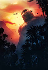 Image Kong: Skull Island Monkeys Helicopter Movies