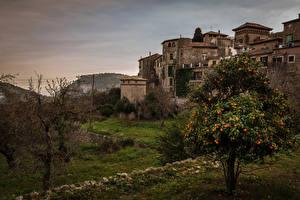 Bilder Mallorca Spanien Haus Bäume Valldemossa