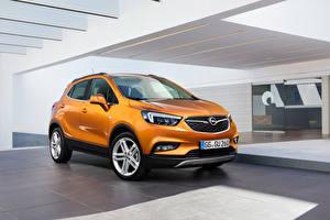 Fotos Opel Orange Crossover Mokka