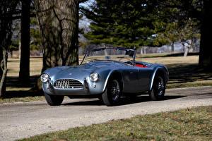Fotos Shelby Super Cars Retro Graue Cabrio 1964 Cobra 289 auto