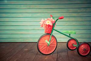 Hintergrundbilder Tulpen Bretter Wände Fahrrad Eimer Blüte