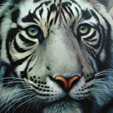 Pictures Big cats Tigers Closeup Painting Art Glance Snout Whiskers Animals
