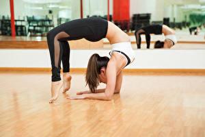 Fonds d'écran Gymnastique Aux cheveux bruns Entraînement Jambe Filles Sport