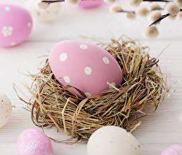 Hintergrundbilder Feiertage Ostern Eier Nest