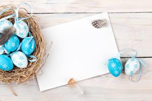 Fotos Feiertage Ostern Federn Bretter Ei Vorlage Grußkarte Nest