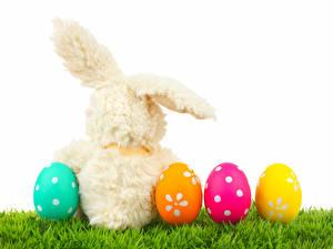 Обои Праздники Пасха Кролики Яйца Трава