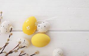Fotos Feiertage Ostern Bretter Eier Ast