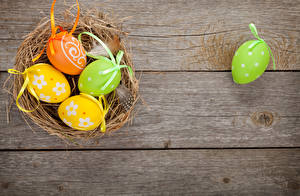 Fotos Feiertage Ostern Bretter Eier Nest