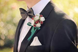 Wallpapers Man Closeup Grooms Suit Bow tie