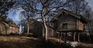 Wallpaper Norway Building Trees Namsos Nord-Trondelag Cities