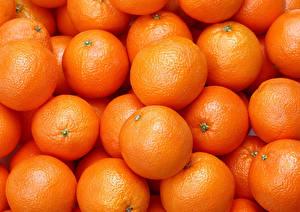Bilder Textur Zitrusfrüchte Apfelsine Viel Lebensmittel