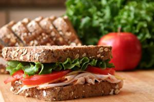 Hintergrundbilder Butterbrot Nahaufnahme Tomate Schinken Brot Sandwich das Essen