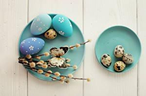 Bilder Ostern Feiertage Schmetterlinge Bretter Eier Ast Teller