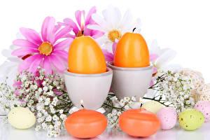 Fotos Feiertage Ostern Kerzen Kosmeen Ei Ast