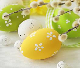Fotos Feiertage Ostern Ei Ast