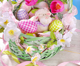 Image Holidays Easter Tulips Sheep Egg Wicker basket