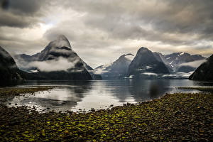 Image Mountains Coast New Zealand Fjord Milford Sound Fjord Nature