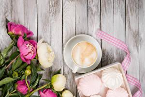 Fotos Pfingstrosen Zefir Cappuccino Bretter Tasse Blumen